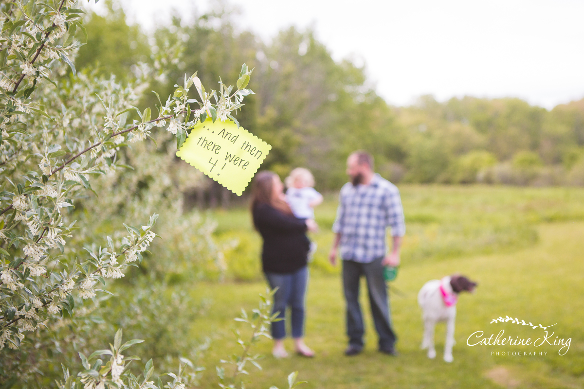 Ct Maternity Photographer Pregnancy Announcement