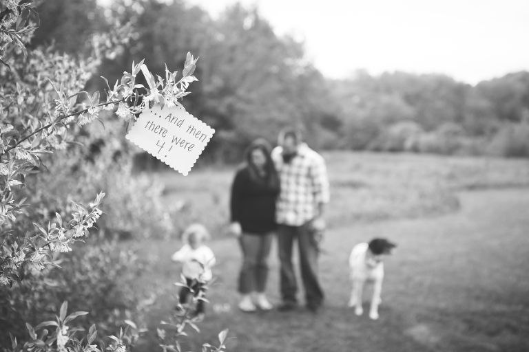 ct maternity photographer pregnancy announcement