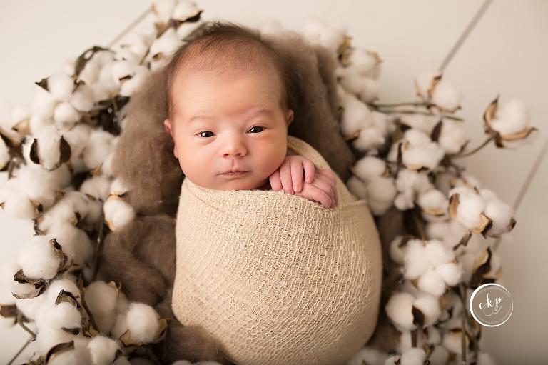 Baby registry ct newborn photographer
